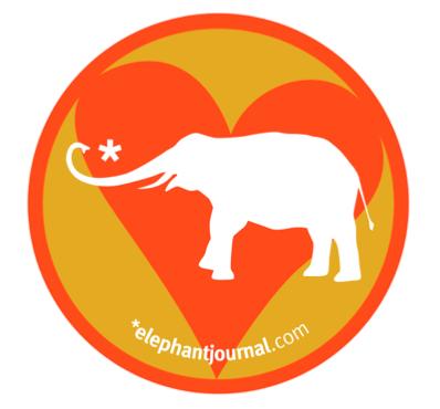 Become an Elephant