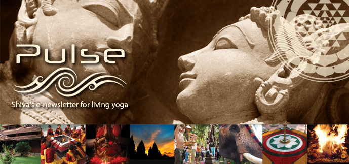 Pulse - Shiva's e-newsletter for living yoga