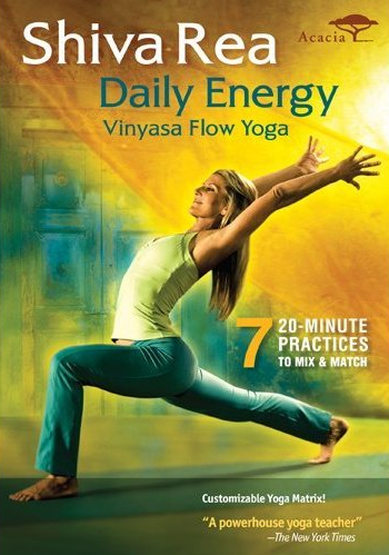 daily energy dvd