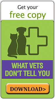 What Vets Don't Tell You