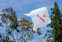 Los Angeles Bans Plastic Shopping Bags